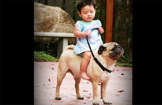 【萌え注意】ペットと子供のツーショット萌え画像集01【画像24枚】