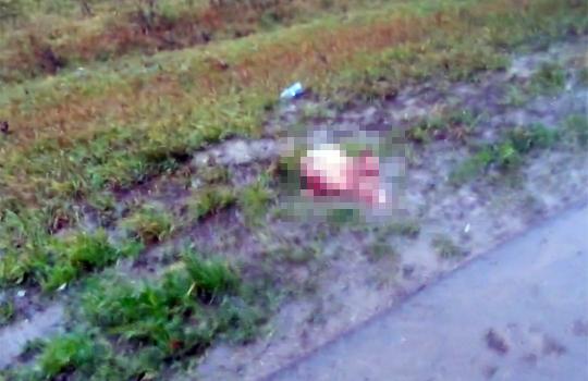 【グロ注意】首が飛ぶほどの悲惨な事故映像・・・