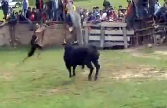 【衝撃映像】闘牛で伸身2回転に挑戦させられるも失敗・・・