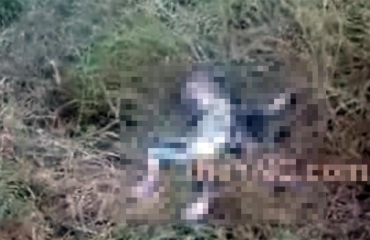 【グロ動画:殺人】生まれたての赤ちゃんを車から投げ捨てる・・・道端で腐った赤ん坊