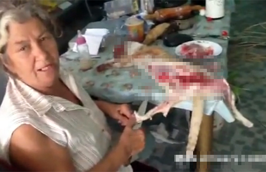 【グロ:鳥肌】食糧不足で猫を殺して切り刻んで捌く女性