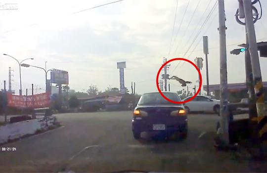 【衝撃映像】車に跳ねられ選手権!総合チャンピオン