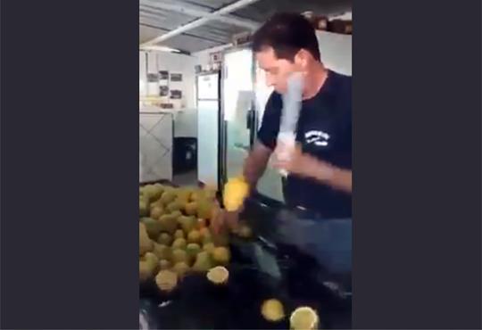 【衝撃映像】忍者にレモン持たせたらスゴイ事なったw!!