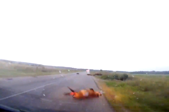 【衝撃映像】イノシシが轢かれた!と思ったらこっちにぶっ飛んできた!