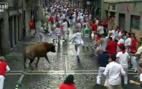 【閲覧注意】牛追い祭り行ったら牛完全に俺狙いなんだけど・・・