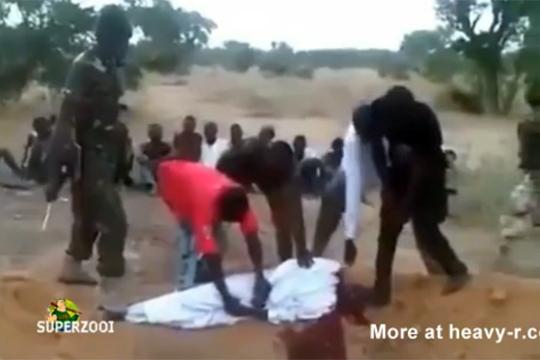 【殺人】ナイジェリアイスラム教のキチガイ斬首映像