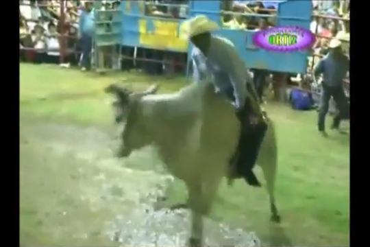 【グロ注意】牛乗り決勝で落牛…そのまま死亡…