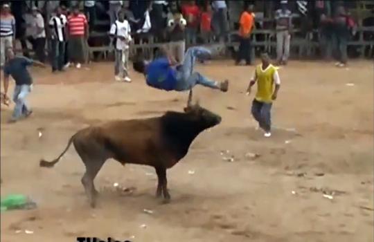 【衝撃映像】闘う牛の逆襲 ~人がゴミの様だ~