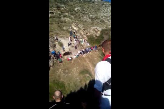 【衝撃映像】崖にいて一番怖いのは牛の突進と言い切れる映像w