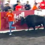 【衝撃映像】闘牛に追いかけられてる女性が空を飛んでる件www