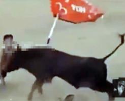 【閲覧注意】闘牛の前に出た勇敢な若者→数秒で刺し殺される・・・