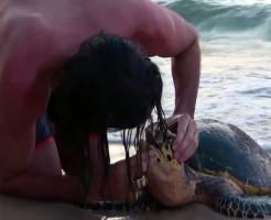 【神動画】心配停止した海がめに人工呼吸した結果・・・w
