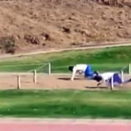 【神動画】チリ軍最強説www障害物競走が超人過ぎるw