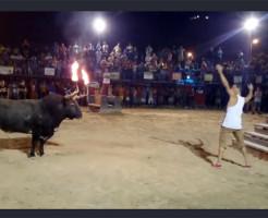 【馬鹿注意】火属性闘牛V牛は階段を登れないと思ってる馬鹿 ※動画有り