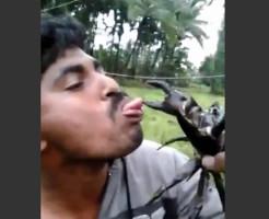【ハプニング】蟹のハサミに舌を近づけて遊んでた馬鹿の末路