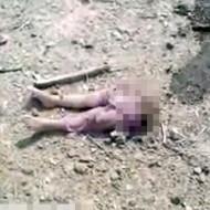 【閲覧注意】シリア紛争地で撮影してたら幼女の下半身が落ちてた・・・