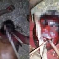 【グロ注意】山で発見された死体・・・拷問の後木で喉を刺され死亡・・・動画有り