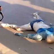 【グロ動画】なぜか顔だけ骨になった水死体が打ち上がる・・・