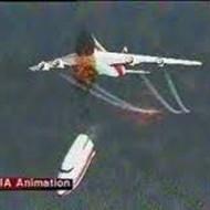 【グロ注意】飛行機が落ちた直後に撮影された映像怖すぎ・・・