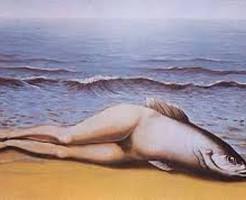 【衝撃映像】遂に陸上にあがる魚が現われるwwwwwwwwwww