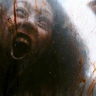 【超閲覧注意】ヘリのプロペラで女性の顔が千切りにされる一部始終・・・