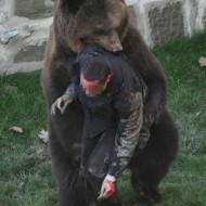 【グロ注意】人間が熊に食べられてるところを実況中継してみた・・・ 閲覧注意