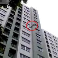 【衝撃映像】マンションから飛び降り→これは逝ったと思いきや・・・
