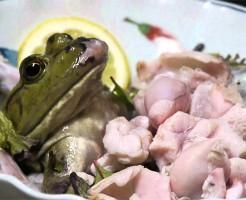 【閲覧注意】カエル捕まえてそのまま食べるとかキチガイすぎる・・・ ※動画あり