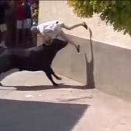 【衝撃】ワシ年寄りやけども闘牛祭り参加した結果w