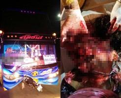 【グロ画像】トラックに頭から突撃した女の子の顔が・・・ 閲覧注意