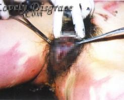 【レイプ画像】拘束され捨てられてたレイプ死体のマンコ見てみた・・・