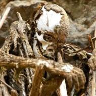 【閲覧注意】パプアニューギニアの遺体埋葬方法が燻製だった・・・