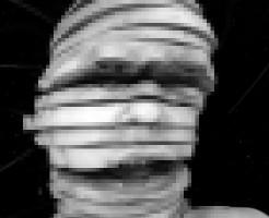 【閲覧注意】人間の頭をまるで包丁で輪切りにしたかのように・・・
