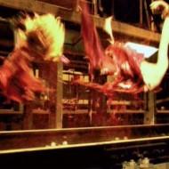 【閲覧注意】SMプレイのような拷問を受けている囚人たち。