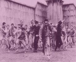 【衝撃映像】刑務所脱走計画実行するも5秒後に失敗するバカな受刑者が現れるw