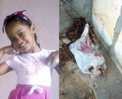 【少女レイプ殺人】行方不明になっていた5歳の女の子、レイプされた後・・・