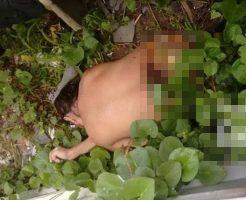 【グロレイプ】チェーンソーで切断された本物レイプ殺人事件美女死体!!※エ□グロ注意※