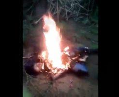 【閲覧注意】レイプ殺人?畑の中で見つかった焼かれている女性。