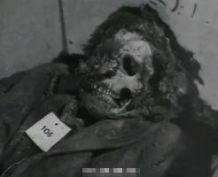 【衝撃映像】ナチス親衛隊が335人殺害したアルデアティーネ洞窟虐殺の現場発掘に行ってきた ※動画