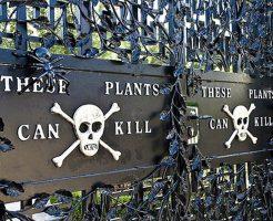 【衝撃映像】防護服着て入園しないと即死する致死植物園に行ったレポートうpするw