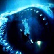 【閲覧注意】ダイバー VS サメ 怖すぎこんなん見たら海で泳げんくなる・・・ ※動画