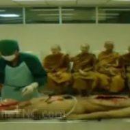 【グロ動画】僧侶も見学に来る頭切開して脳みそ取り出す解剖屋さんの見学会 ※閲覧注意