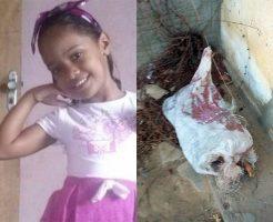 【閲覧注意】5歳の女の子がレ○プされて殺害、変わり果てた姿で発見される。