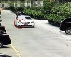 【閲覧注意】駐車場で遊んでいた子供が目の前で轢き殺された時の母親の反応を見て運転する時は気をつけろ ※動画