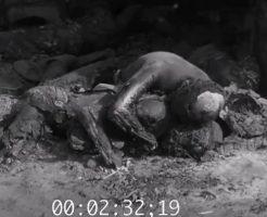 【大虐殺】1016人を倉庫に閉じ込め焼き殺す…WW2ドイツ軍の行ったガルデレーゲンの虐殺