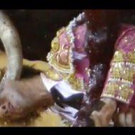 【閲覧注意】スペインのプロ闘牛士が目をくり抜かれる瞬間をご覧ください・・・素人出たらそりゃ死ぬわな グロ動画