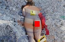 【グロ画像】レイプ中にケツを銃で撃たれて掘り殺された女性