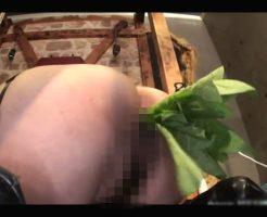 【エログロ 動画】それではここでマンコ内栽培でほうれん草を植えられて可哀想な日本人女性をご覧くださいw※無修正