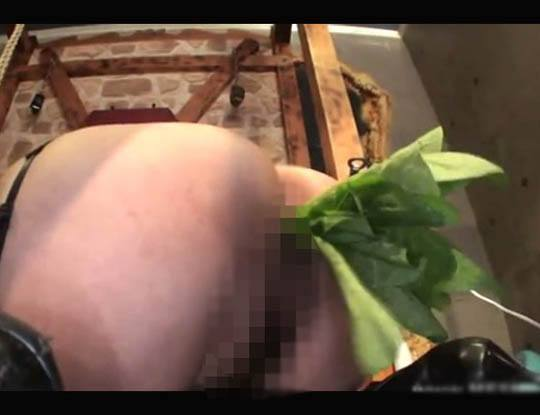 【エログロ 動画】それではここでマ●コ内栽培でほうれん草を植えられて可哀想な日本人女性をご覧くださいw※無修正