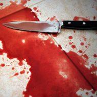 【悲鳴注意】44hit!命乞いする人間をズタズタに刺し殺してみました・・・ 動画